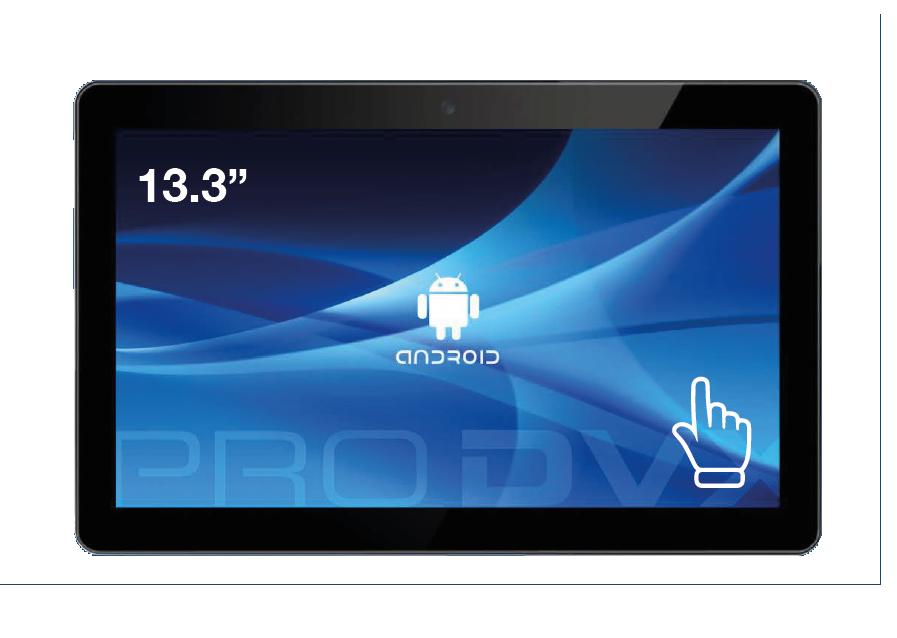 ProDVX APPC-13DSKP (front)